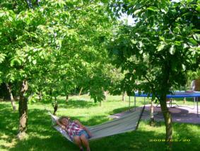 Freizeit auf Müllers Bauernhof